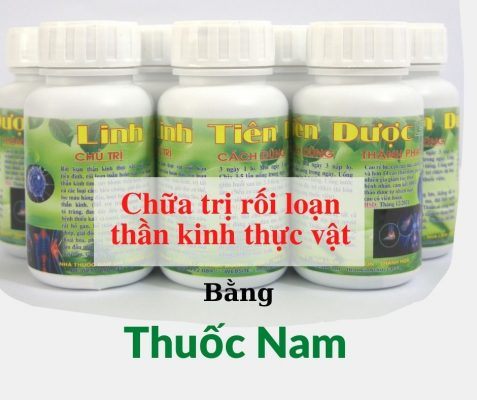 thuoc-nam-linh-tien-duoc-dac-tri-roi-loan-than-kinh-thuc-vat (12)
