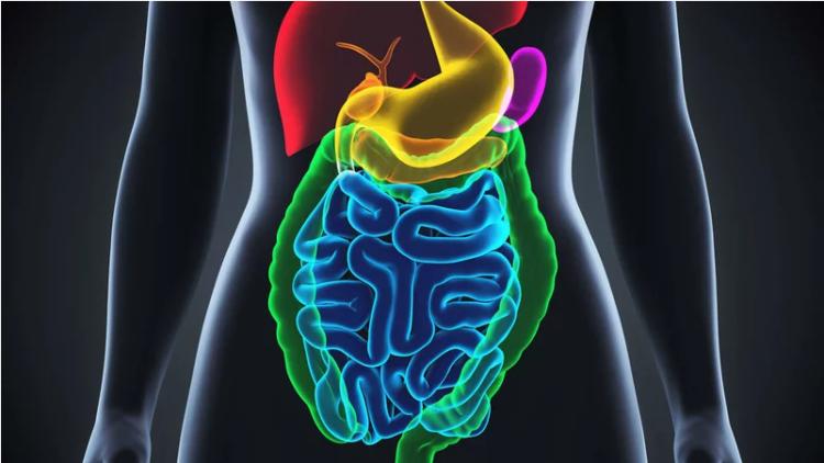 Bệnh liệt dạ dày là nguyên nhân gây buồn nôn
